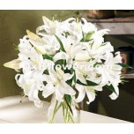 Oriental lily Bouquets