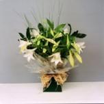 Longi Lillies arrangement