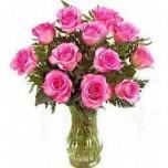 OFFER-Pink Roses in Vase