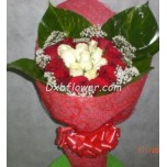 hug roses