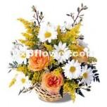 Vibrant Floral Grandeur
