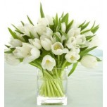 White Tulips Bouqets