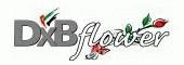 DXB Flower